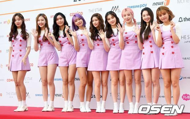 Asia Artist Awards bê cả showbiz lên thảm đỏ: Yoona, Suzy lép vế trước Park Min Young, hơn 100 sao Hàn lộng lẫy đổ bộ - Ảnh 58.