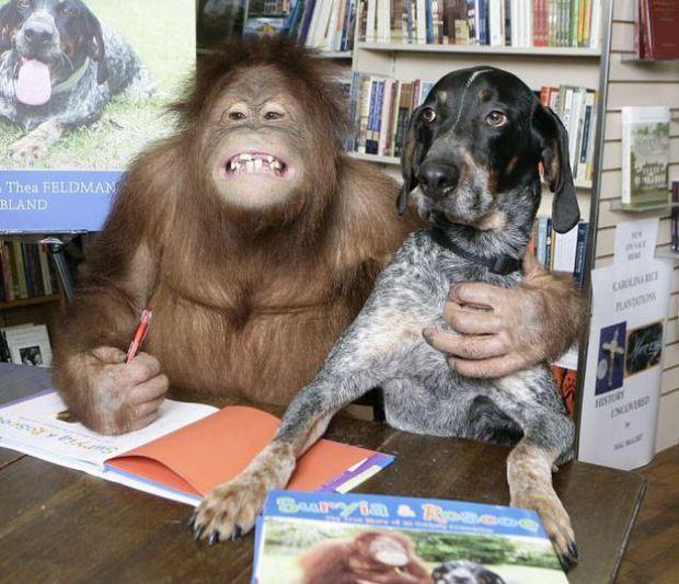 Hãy sống tốt, nếu không muốn bị ghét bởi chính chú chó nhà bạn - Ảnh 2.