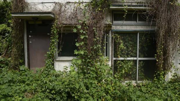 8 triệu ngôi nhà ma tại Nhật Bản: Bí mật gì ẩn chứa đằng sau con số rùng rợn này? - Ảnh 1.