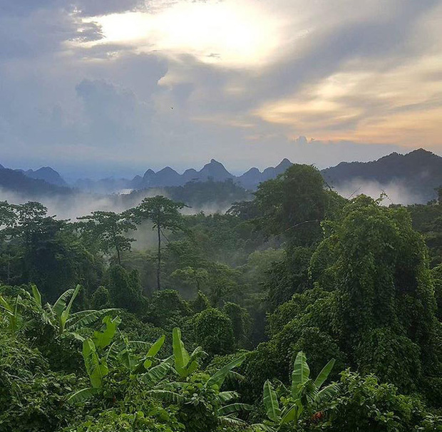 Xuất hiện hàng loạt những tour du lịch đến thăm Việt Nam ăn theo sức nóng của Kong: Skull Island - Ảnh 4.