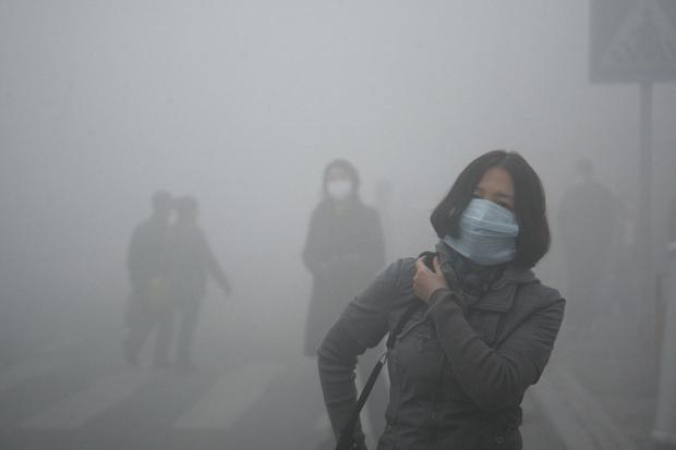 Làm ngay những điều sau để bảo vệ phổi - chiếc máy hút bụi của cơ thể - Ảnh 1.