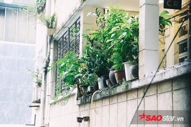 Những hình ảnh cuối cùng bên trong chung cư của 'những kẻ mộng mơ' 42 Nguyễn Huệ - Ảnh 2.