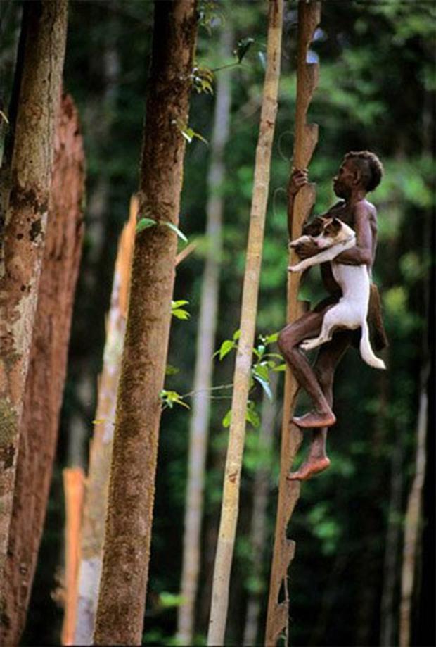 Sống trên những ngôi nhà cây cao tới 50m, bộ lạc bí ẩn khiến nhiều người khâm phục sức sống phi thường - Ảnh 7.