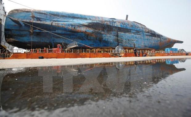 Hàn Quốc: Thử nghiệm đưa tàu Sewol lên mặt đất thất bại - Ảnh 1.