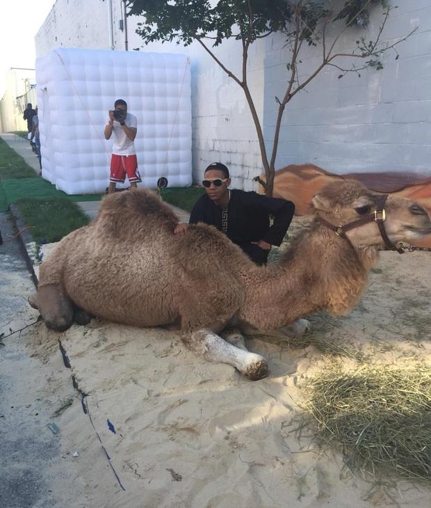 Mỹ: Mẹ chi 560 triệu để đưa con trai đến buổi dạ tiệc bằng lạc đà, siêu xe cùng 3 cô bạn gái - Ảnh 1.