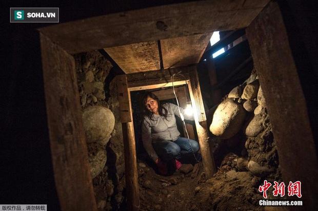 Tin chắc trong nhà có kho báu, người phụ nữ quyết định đào địa đạo tìm kiếm - Ảnh 1.