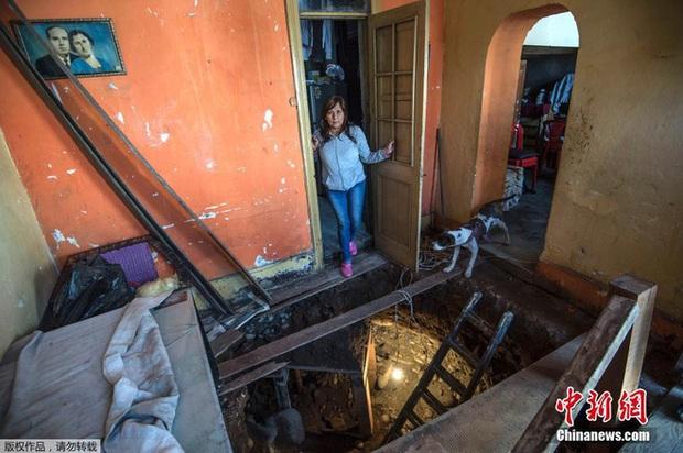 Tin chắc trong nhà có kho báu, người phụ nữ quyết định đào địa đạo tìm kiếm - Ảnh 2.