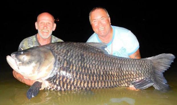 Hai gã dùng tro cốt của bạn thân để làm thính đi câu cá khổng lồ và sự thật phía sau không ai ngờ - Ảnh 2.