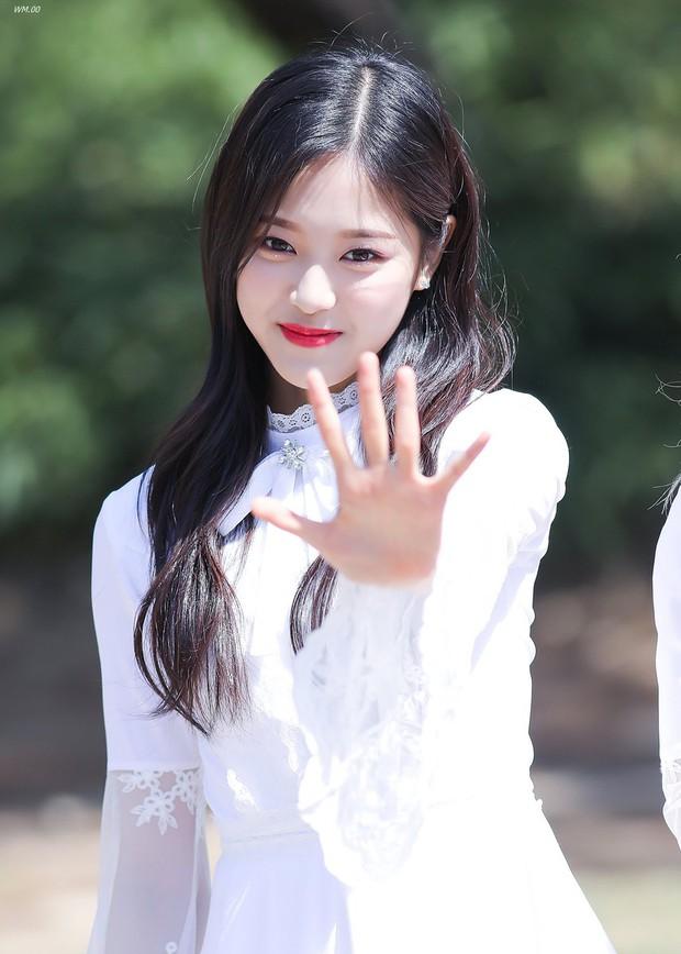 Thay thế Yoona và Suzy, ai trong số 7 nữ tân binh này sẽ trở thành nữ thần thế hệ mới? - Ảnh 2.
