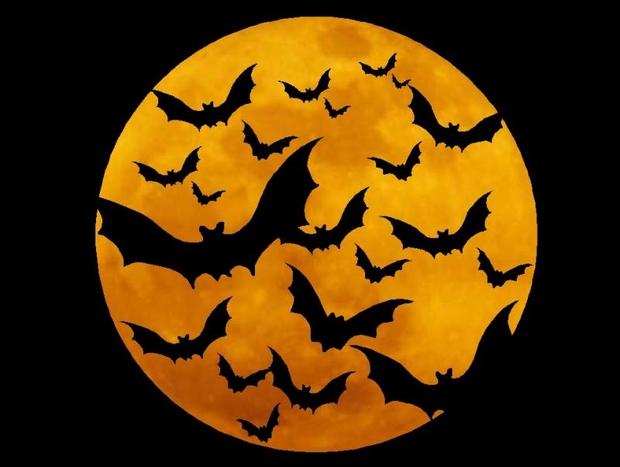 Lạnh người trước ý nghĩa ma quái của các biểu tượng Halloween - Ảnh 1.