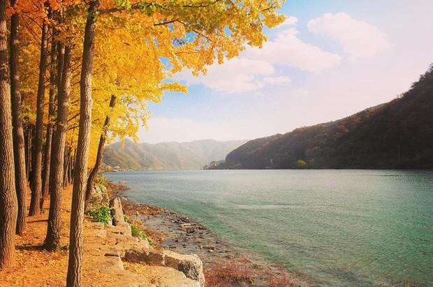 5 điểm đến mùa thu sẽ khiến bạn ngất ngây vì phong cảnh đẹp như trong mơ - Ảnh 1.