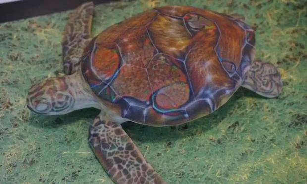 Trí tuệ nhân tạo của Google bảo chú rùa này là một khẩu súng trường và đó là điều rất đáng quan ngại - Ảnh 1.