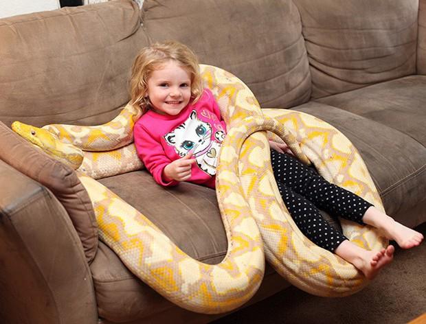 Bất chấp nguy hiểm, ông bố để con gái 3 tuổi chơi với trăn khổng lồ dài tới gần 6m - Ảnh 2.