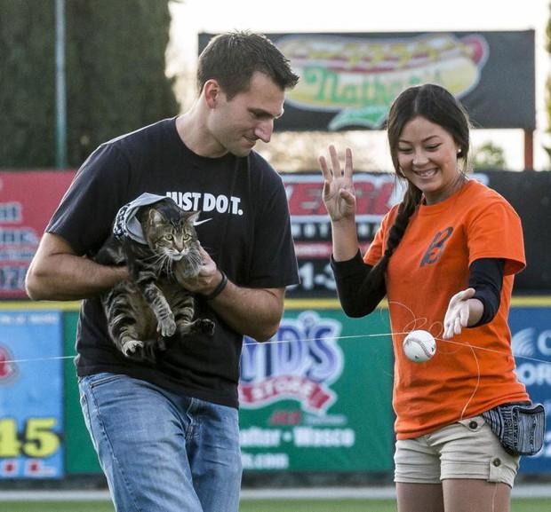 Chú mèo nhận giải thưởng danh dự chỉ dành cho chó nhờ cứu sống cậu bé tự kỷ thoát chết trong gang tấc - Ảnh 8.