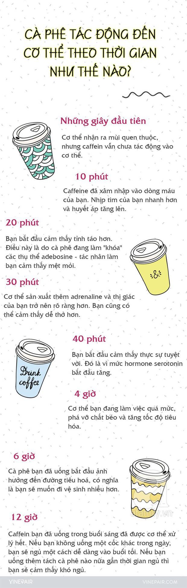 Khi uống 1 ly cà phê, bạn có chắc đã nắm được sự tác động của nó lên cơ thể từng giây từng phút như thế nào? - Ảnh 1.