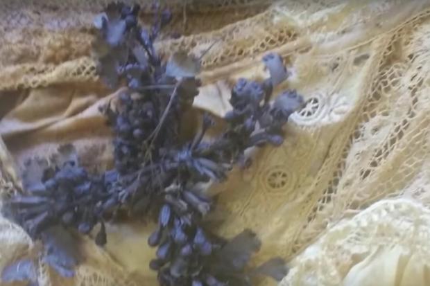 Sau gần 200 năm, xác ướp bé gái được bảo quản nguyên vẹn trong quan tài kính cũng đã có lời giải - Ảnh 3.