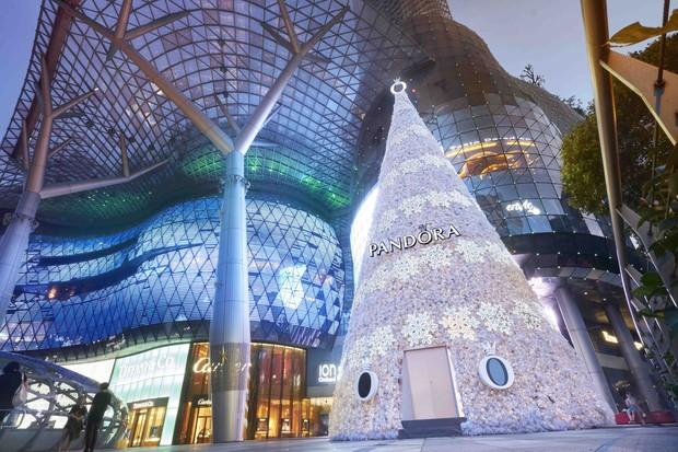 Khung cảnh đón Giáng sinh sớm ở nhiều nơi trên khắp thế giới: Lộng lẫy, nguy nga và ấm áp - Ảnh 7.