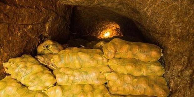 Ngồi nghỉ ở hầm khoai tây, lão nông phát hiện ra cả kho báu mà bấy lâu nay không biết - Ảnh 1.