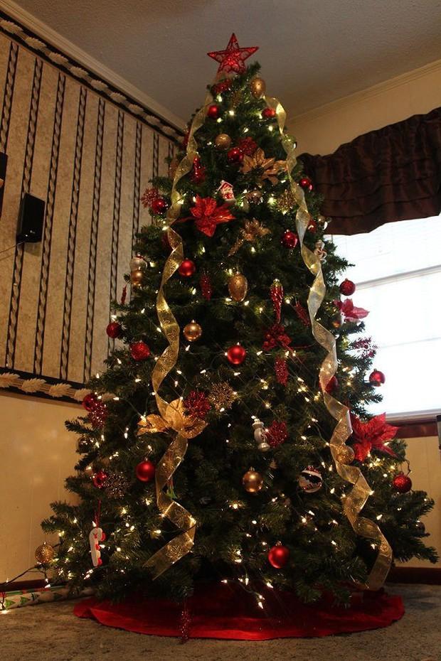 5 bí mật về ngày Giáng sinh: Nguyên mẫu của ông già Noel và câu chuyện đàn tuần lộc bị thiến - Ảnh 6.