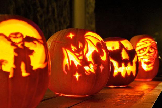 Những điều kỳ quái của lễ hội Halloween 31/10: Vì sao mèo đen bị cấm nhận nuôi dịp này? - Ảnh 11.