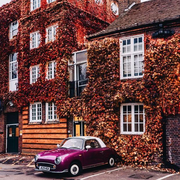 Khung cảnh thu lá vàng xuyến xao lòng người: Đâu phải ngẫu nhiên mà chúng ta yêu mùa thu đến vậy - Ảnh 13.