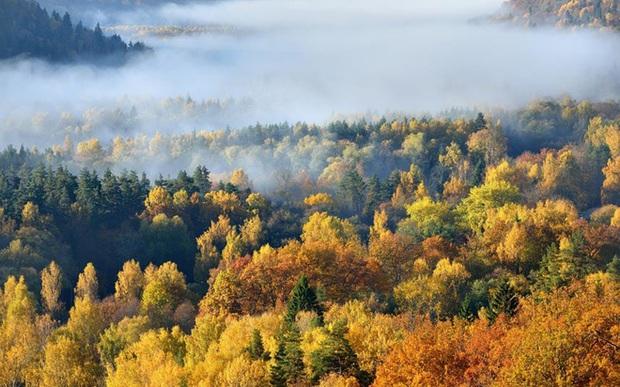 Một vòng Trái đất những địa điểm tuyệt đẹp để du ngoạn mùa thu - Ảnh 15.