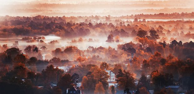 Khung cảnh thu lá vàng xuyến xao lòng người: Đâu phải ngẫu nhiên mà chúng ta yêu mùa thu đến vậy - Ảnh 14.