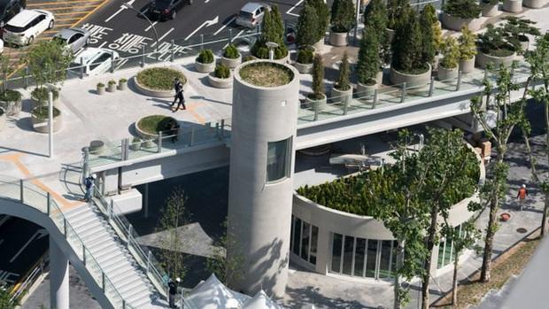 Ngắm khu vườn đẹp như cổ tích trên cầu vượt ở Seoul - Ảnh 4.