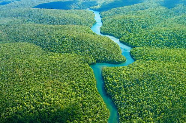 Phát hiện kỳ thú này đã đưa sông Amazon soán ngôi sông Nile với hạng mục sông dài nhất thế giới - Ảnh 3.