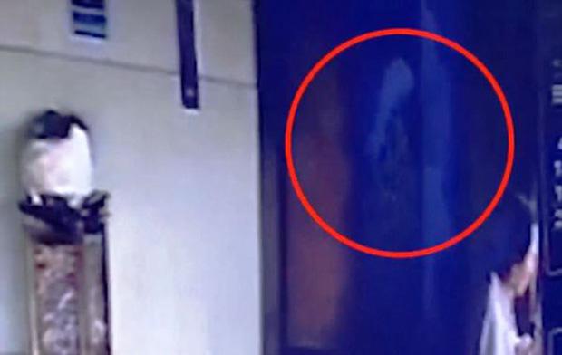 Vội vã vào thang máy, người phụ nữ rơi tự do từ tầng 7 xuống đất tử vong - Ảnh 3.