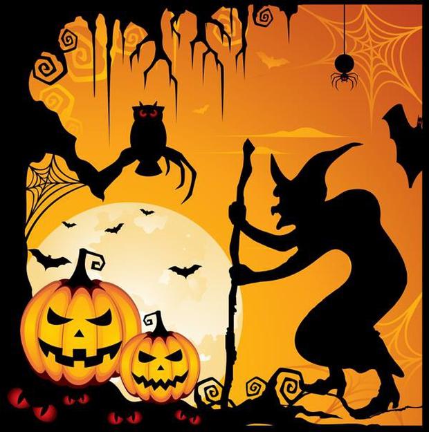 Những điều kỳ quái của lễ hội Halloween 31/10: Vì sao mèo đen bị cấm nhận nuôi dịp này? - Ảnh 3.