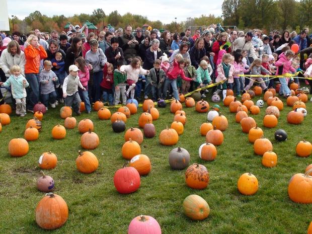 13 trò chơi Halloween kỳ cục, hài hước, ma mị dành cho cả gia đình trong ngày lễ hội ma quỷ 31/10 - Ảnh 3.