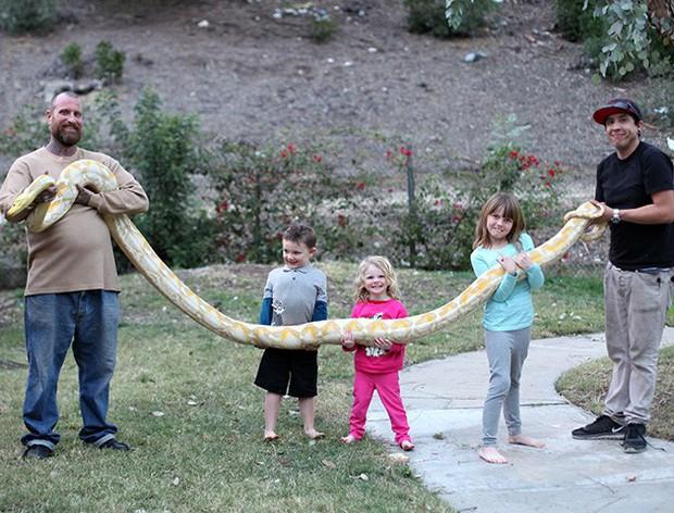 Bất chấp nguy hiểm, ông bố để con gái 3 tuổi chơi với trăn khổng lồ dài tới gần 6m - Ảnh 4.