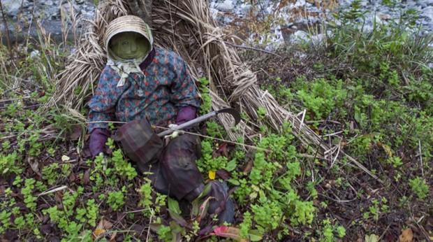Ám ảnh khung cảnh rùng rợn của ngôi làng tại Nhật Bản nơi búp bê dần thay thế con người - Ảnh 6.