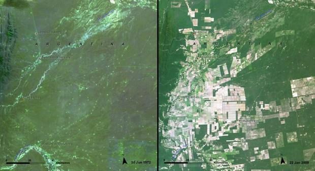 Nắng nóng cực độ không chỉ ở Việt Nam: Thế giới đã thay đổi chóng mặt suốt 70 năm qua vì hiện tượng ấm lên toàn cầu - Ảnh 7.
