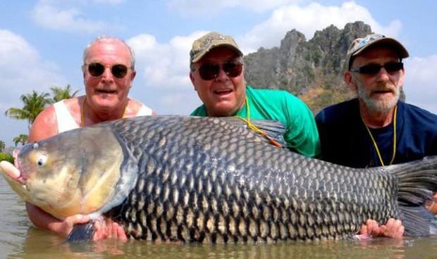 Hai gã dùng tro cốt của bạn thân để làm thính đi câu cá khổng lồ và sự thật phía sau không ai ngờ - Ảnh 1.