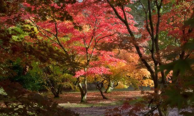 Một vòng Trái đất những địa điểm tuyệt đẹp để du ngoạn mùa thu - Ảnh 4.