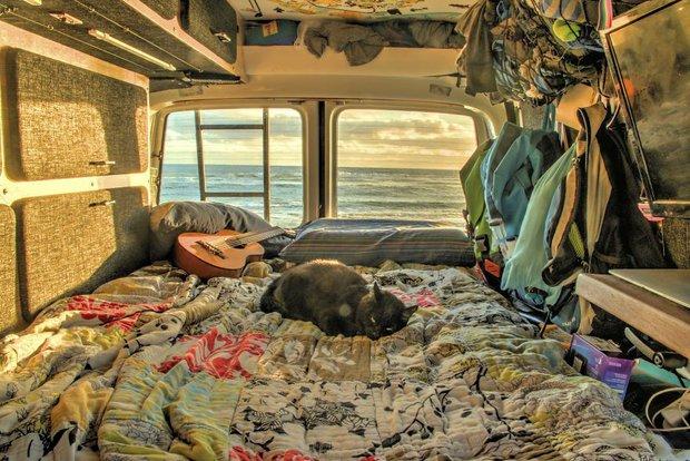 Bán nhà cửa rồi bỏ việc, chàng trai trẻ dắt mèo cưng đi du lịch vòng quanh đất nước suốt 2,5 năm - Ảnh 4.