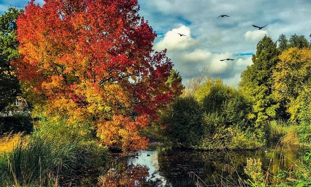 Một vòng Trái đất những địa điểm tuyệt đẹp để du ngoạn mùa thu - Ảnh 5.