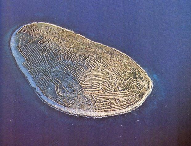 Sự thật bất ngờ phía sau hình ảnh dấu vân tay khổng lồ giữa đại dương mênh mông - Ảnh 6.