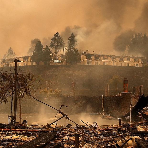 Bức ảnh gây nhói lòng trong vụ cháy rừng lịch sử tại Mỹ: Khung cảnh không khác gì một vụ thả bom nguyên tử - Ảnh 4.