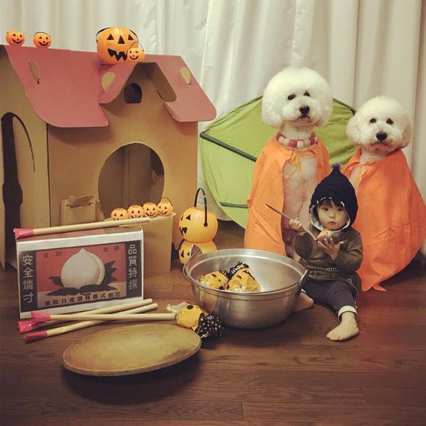 Loạt ảnh hóa trang Halloween hoành tráng nhất mạng xã hội của bé gái Nhật và những người bạn thú cưng - Ảnh 5.
