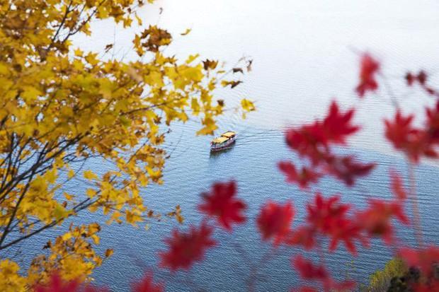 5 điểm đến mùa thu sẽ khiến bạn ngất ngây vì phong cảnh đẹp như trong mơ - Ảnh 6.