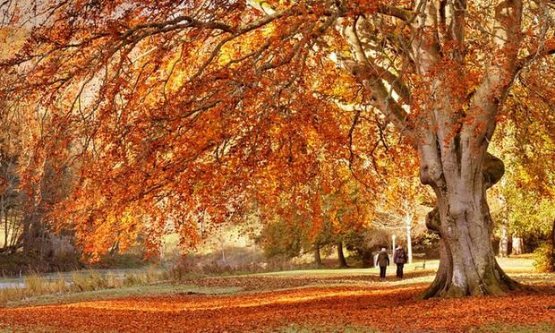 Một vòng Trái đất những địa điểm tuyệt đẹp để du ngoạn mùa thu - Ảnh 7.