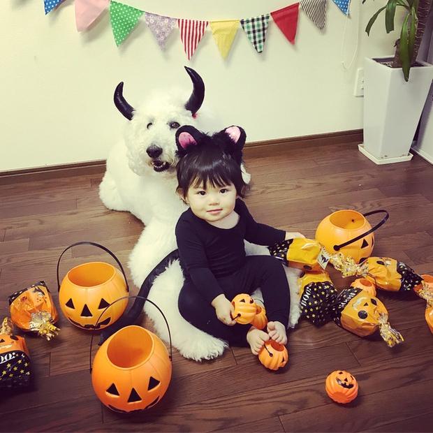 Loạt ảnh hóa trang Halloween hoành tráng nhất mạng xã hội của bé gái Nhật và những người bạn thú cưng - Ảnh 7.