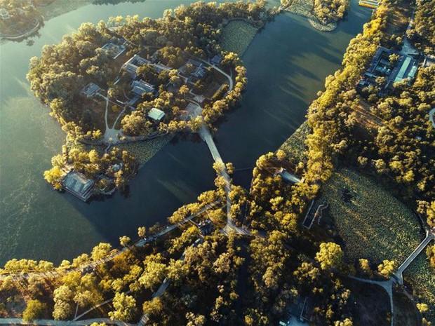 5 điểm đến mùa thu sẽ khiến bạn ngất ngây vì phong cảnh đẹp như trong mơ - Ảnh 7.