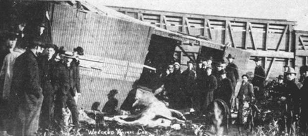 10 bi kịch kinh hoàng nhất từng xảy ra trong lịch sử làng xiếc - Ảnh 8.