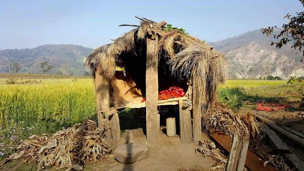 Nỗi đau đớn của phụ nữ Nepal trong kỳ kinh nguyệt: Không được ngủ tại nhà, có người chảy máu tới chết - Ảnh 2.