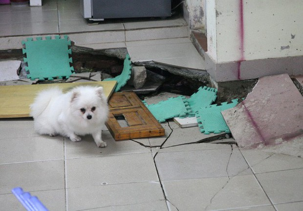 Hà Nội: Hàng chục người tháo chạy vì nền nhà sụt lún, nổ lớn trong đêm - Ảnh 9.