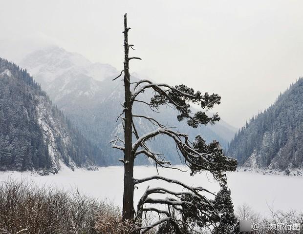 Quên Cửu Trại Câu lá vàng đi, thiên đường hạ giới mùa đông đẹp không khác gì chốn bồng lai tiên cảnh - Ảnh 7.